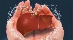 【学术活动】中医名家讲中医:肝病的经方治疗